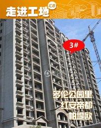 安阳东区楼盘10月施工进度 width=