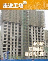 安阳东区6月工程进度 width=