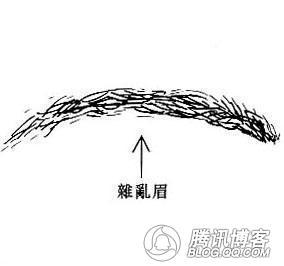 哪种眉毛有害人倾向