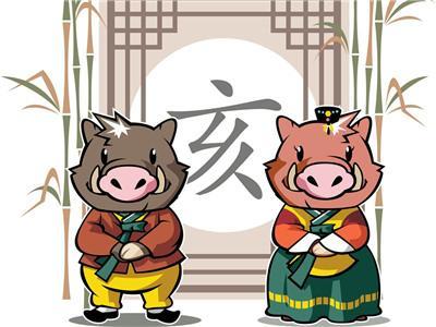 2019年生肖猪男运势