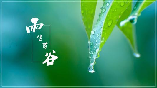 杨清华十二生肖周运