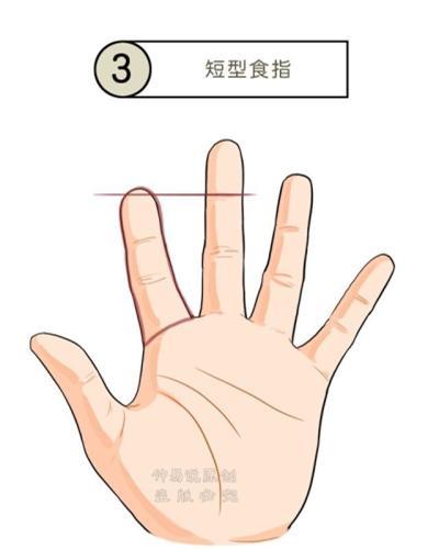 从手指的长短看事业