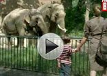 视频:2009法兰克福车展宣传片