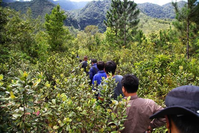 但是保护区的这两公里我们走了1个小时,路窄,各种障碍,各种小动物
