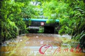 深圳降暴雨 女车主被困涵洞不幸车内溺亡