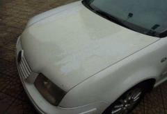 白色车身容易发黄?教你如何保养护理爱车