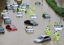 韩国暴雨汽车全被淹