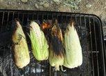 玉米貌似烤糊了