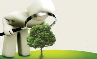 """""""低碳化""""成为汽车产业发展新特点"""