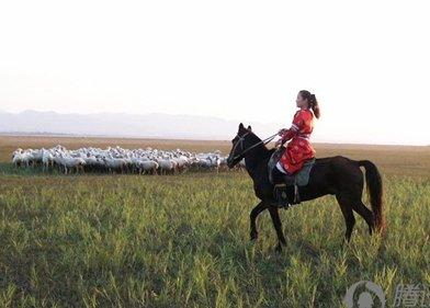 京西草原――边骑马边烧烤的草原