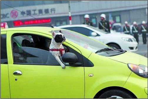 副驾驶明明没有坐人 却被罚款200元记2分