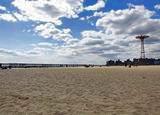 美丽的科尼岛海滩