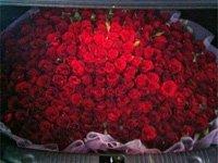 后备箱装满玫瑰送给爱人