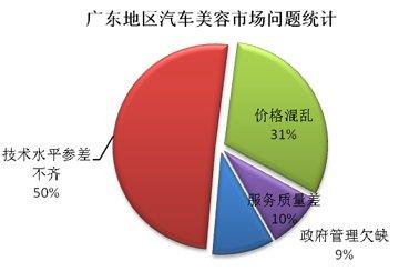 华南地区汽车美容市场问题统计图