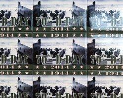 诺曼底70周年纪念活动
