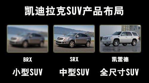中国市场需求.全新小型suv将基于凯迪拉克provoq概念车进行