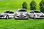东风标致:数款车或能入选