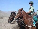骑着马儿的巡逻队
