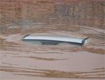 水淹没车顶 车险应全赔