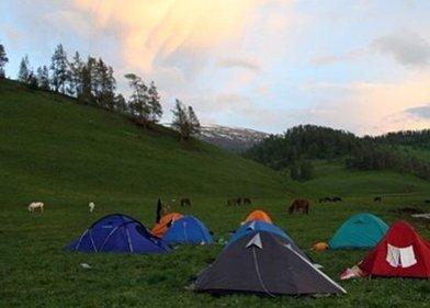 空中草原――露营在群山环抱中的花草世界