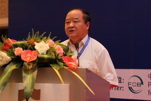中国机械工业联合会副会长中国汽车工程学会理事长 张小虞