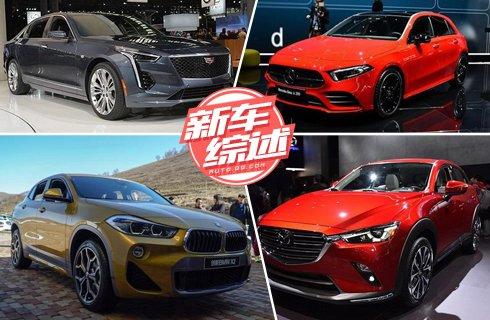 多款新车正式亮相 汽车界的颜值担当