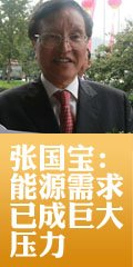 张国宝:经济发展中能源需求已成巨大压力