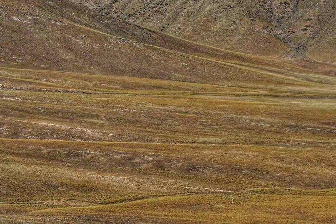 新疆青河县风景