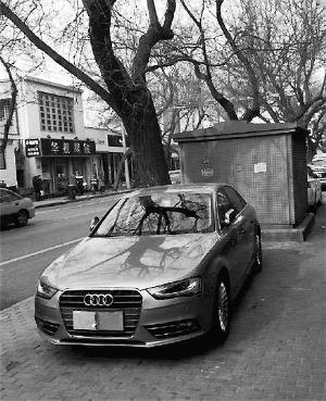 奇葩车主铁盒锁牌照 被扣光12分罚款400元