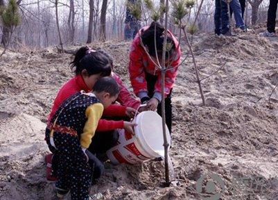 清明最应景的活动--植树