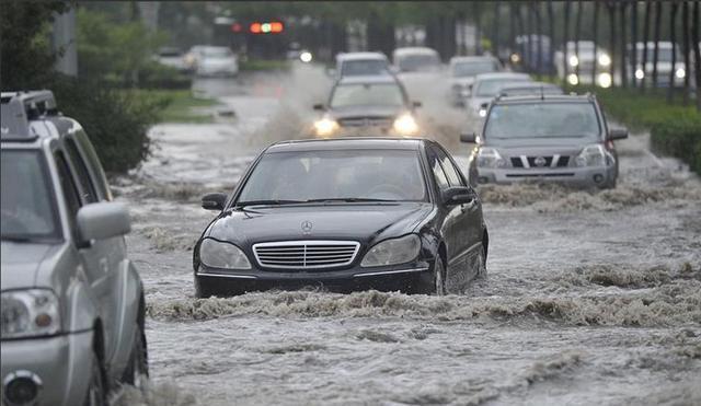 每次暴雨后都能捡到一堆车牌,车牌为何这么容易掉?