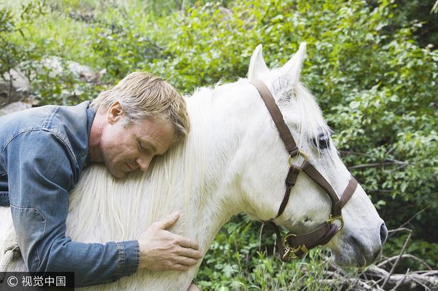 论一匹马的自我修养