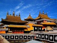 入藏须知(四)学会简单的藏语