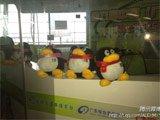 交通台直播室有企鹅站岗