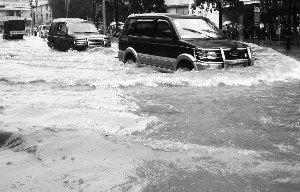 莞5100汽车遭浸保险赔付预估过亿