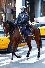 潇洒的纽约骑警