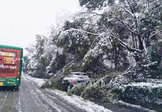 大雪过后 该如何正确养护爱车呢?