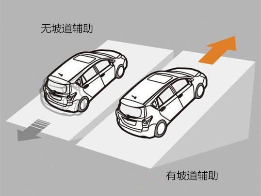 选车最应重视的问题 10款紧凑车安全配置大对比