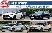 称职家用车 自主中型城市SUV推荐