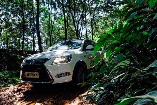 风情雨林 这波跨界你赶上了吗?