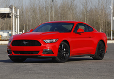 Mustang 野马