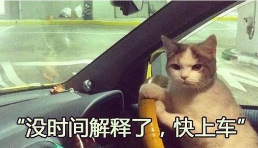 SWM斯威邀请您一起参加华南城车展