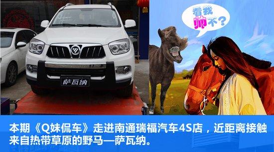 Q妹侃车第十期:福田萨瓦纳 爱上一匹野马家里就是草原