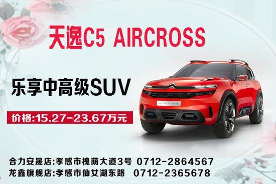 乐享中高级SUV 天逸 C5 AIRCROSS