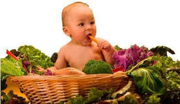 专家建议:婴幼儿补锌食谱大全