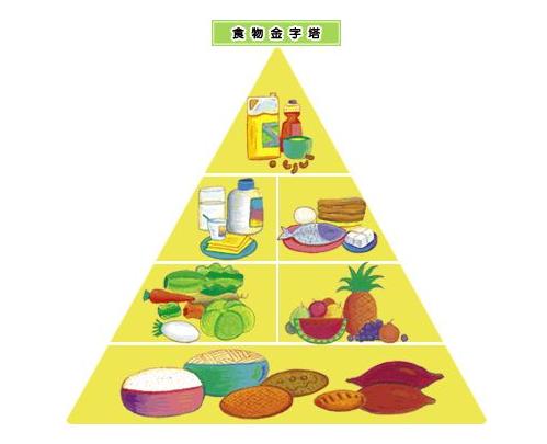 均衡营养联手益生菌 开启强壮计划