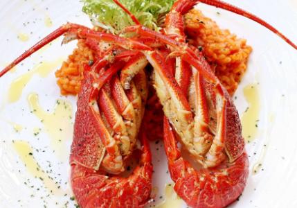 怀孕期间孕妇可以吃龙虾吗?