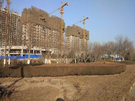 上林熙园施工进度图