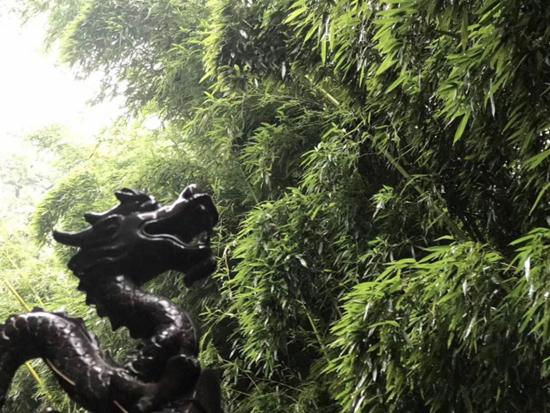"""与爱零距离感受最绿城 """"北京零距离""""品鉴实录"""