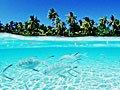 实拍50年后将沉入海底的美丽岛国